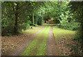 SO7799 : Carriage drive, Badger by Derek Harper