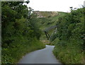 NZ8811 : Cleveland Way leading to the promenade at Whitby Sands by Mat Fascione