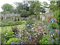 SN5822 : A colourful corner of the walled garden at Aberglasney by Eirian Evans