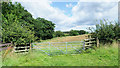 NZ2219 : Route of public footpath beyond gate by Trevor Littlewood