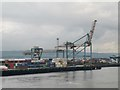 J3678 : Cranes and shipping containers at Victoria Terminal 3 (Belfast Container Terminal) by Phil Champion