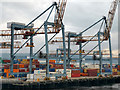 J3677 : Cranes at Belfast Container Terminal (Victoria Terminal 3), Belfast Harbour by Phil Champion