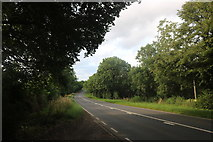 SK9232 : Great North Road, Little Ponton by David Howard