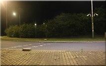 TA0441 : Crossing on Hull Bridge Road at Swinemoor Lane Roundabout by David Howard