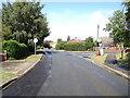 TG1617 : Taversham Road, Felthorpe by Adrian Cable