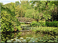 SJ7481 : Tatton Park  Japanese Garden, Rustic Bridge by David Dixon