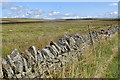 NY8510 : Dry stone wall with single strand of barbed wire by Mick Garratt