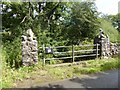 NY6714 : Bridge over Scale Beck by Oliver Dixon