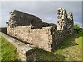 C6706 : Banagher Old Church by Phil Champion