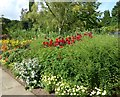 TQ6356 : Flowerbed at Great Comp Garden by Marathon