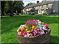 SK1675 : A tub of summer flowers in Litton by Neil Theasby