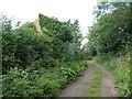 SU3997 : Derelict building, Bullockspits Lane by Vieve Forward