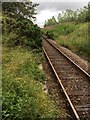 ND0956 : Section of track at  Scotscalder Station, location of former Signal Box by thejackrustles