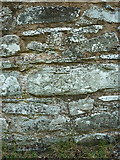 SJ1532 : OS benchmark - Llanarmon DC - south face of the church by Richard Law