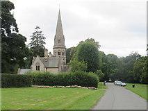 TQ1450 : Ranmore Common Road, near Dorking by Malc McDonald