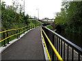 SJ9297 : Canal ramp at Guide Bridge by Stephen Burton