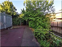 TQ1883 : Footpath next to the River Brent by James Emmans