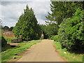 TQ1448 : Milton Street, Westcott, near Dorking by Malc McDonald