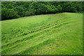 SO2676 : Ridges on Offa's Dyke near Garbett Hall by Jeff Buck