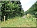TQ1648 : The Greensand Way, Dorking by Malc McDonald