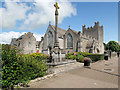 R4646 : Adare Trinitarian Monastery by David Dixon
