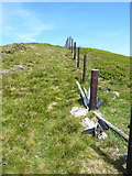 SJ1033 : More white stones near the summit of Foel Wen by Richard Law