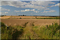 NJ9024 : Fields near Udny Station, Aberdeenshire by Andrew Tryon