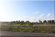 TL1194 : Oundle Road, Chesterton by David Howard
