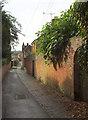 SU8347 : Park Row, Farnham by Derek Harper