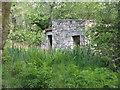 NM9834 : Roadside ruin by Loch Etive by M J Richardson