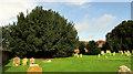 SU8346 : St Andrew's churchyard, Farnham by Derek Harper