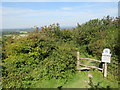 TQ3213 : Footpath and Stile on Ditchling Down, near Brighton by Malc McDonald