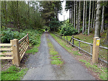 SN7673 : Gateway on a Hafod estate road by John Lucas