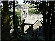 SN7673 : Hafod Church glimpsed through the trees by John Lucas