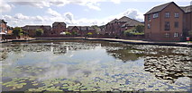 SO9691 : Tividale Quays Basin, Tipton by Paul Collins