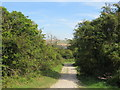 TQ3207 : Path near Brighton by Malc McDonald