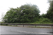TL9663 : The A14, Tostock by David Howard