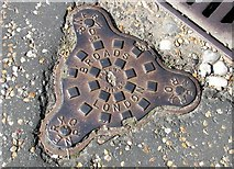 TG2308 : Norwich Cathedral Close - drain cover (Patent 311865) by Evelyn Simak