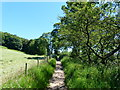NY4624 : Footpath from temporary car park to Pooley Bridge by Ruth Sharville