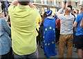 TG2208 : Protester wrapped in a European flag by Evelyn Simak