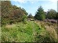 SE5182 : Path along Casten Dike by Oliver Dixon