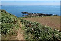 SX5746 : Path to Wadham Beach by Hugh Venables