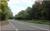 TL2672 : Huntingdon Road, Banks End by David Howard