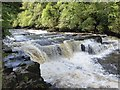 NS8842 : New Lanark Mills - The Falls of Clyde  by Rob Farrow