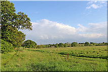 SK1409 : Bridleway and pasture near Huddlesford in Staffordshire by Roger  Kidd