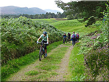 NH8621 : National Cycle Route No 7 by Anne Burgess