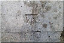 ST1599 : Ordnance Survey Cut Mark by Adrian Dust