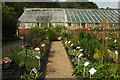 ST3505 : Kitchen garden, Forde Abbey by Derek Harper