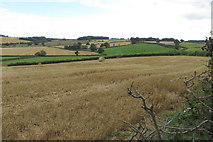 SP6157 : Rolling fields by Farthingstone Road by Philip Jeffrey