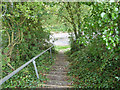 SZ5479 : Steps at east end of path GL50 by Robin Webster